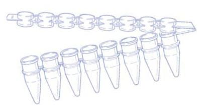 Image – 8-Strip-PCR-Tubes-with-attached-cap-strip - illustration
